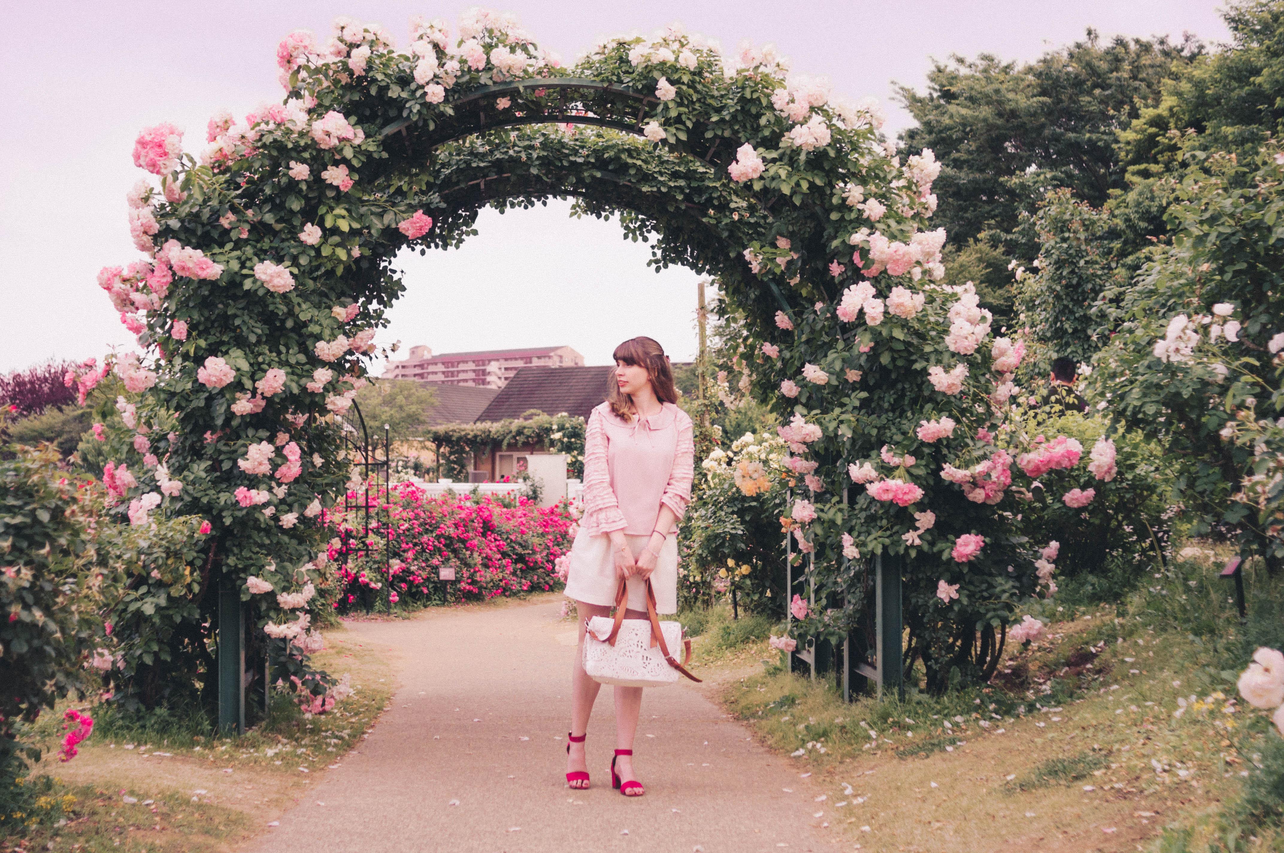 Keisei Rose Garden Ana Around The World
